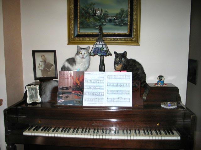 on_piano4.jpg