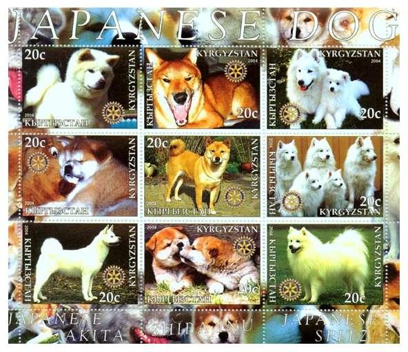 yoshi_stamp.jpg